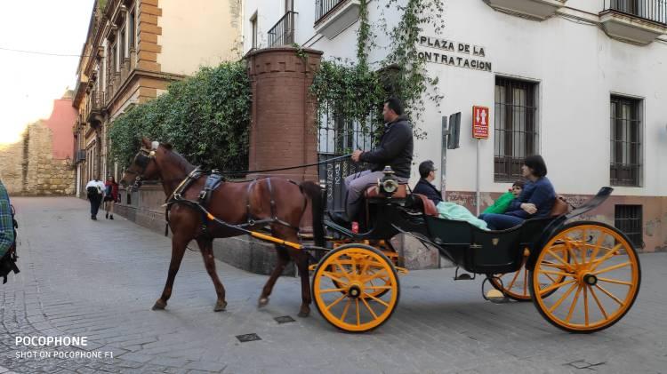 Calèche dans les rues de Séville