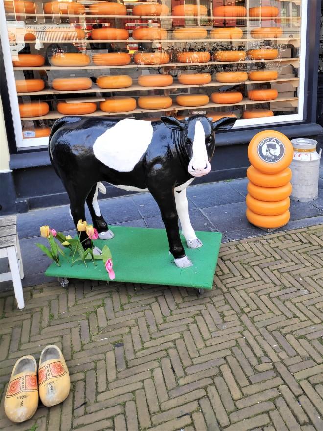 Magasin de fromage à Delft