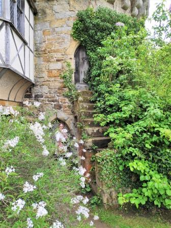 Vestiges de Scotney Castle