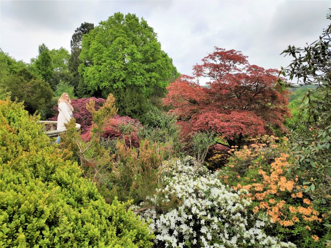 Jardins de Scotney Castle