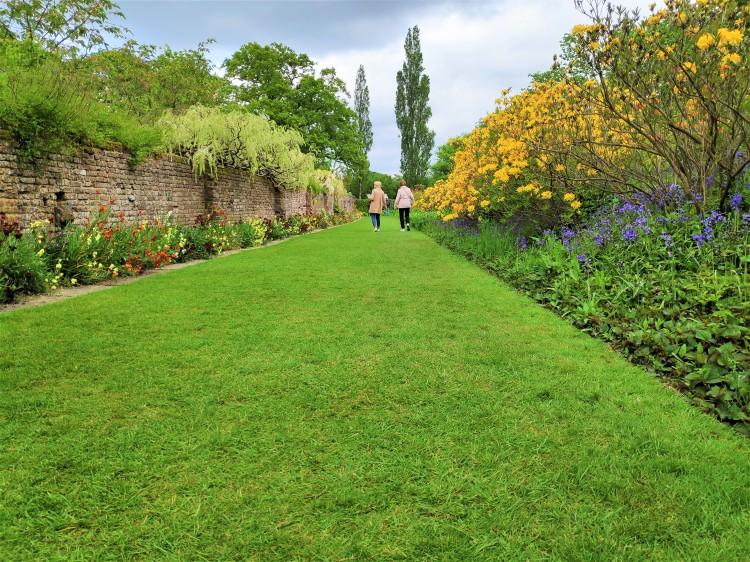 Magnifique allée dans les jardins de Sissinghurst