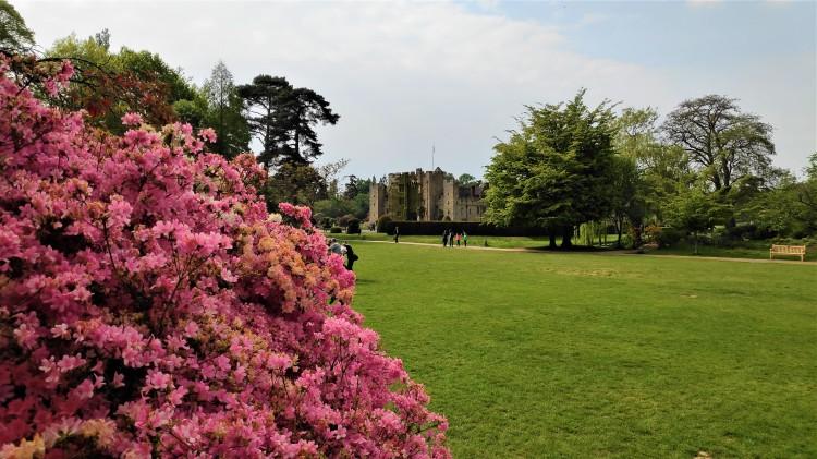 Château et jardin de Hever dans le Kent