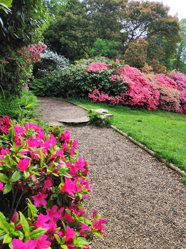 Sentier dans le jardin de Hever