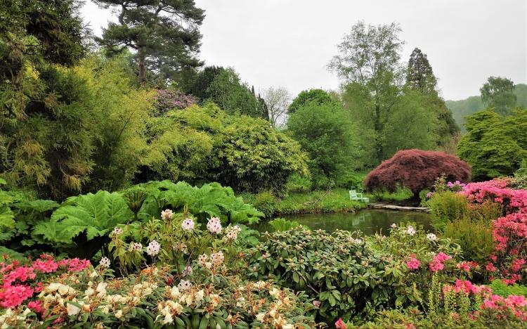 L'étang de WInston Churchill