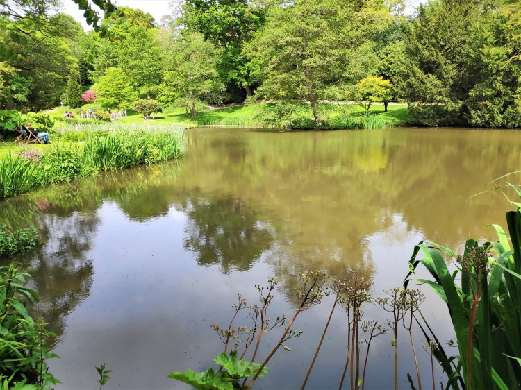 Dans les jardins d'Ightham Mote