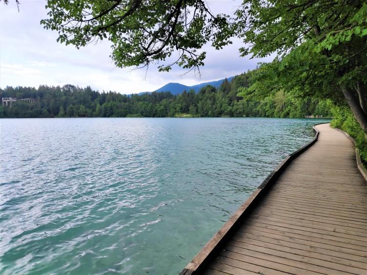 Passerelles en bois sur le Lac de Bled