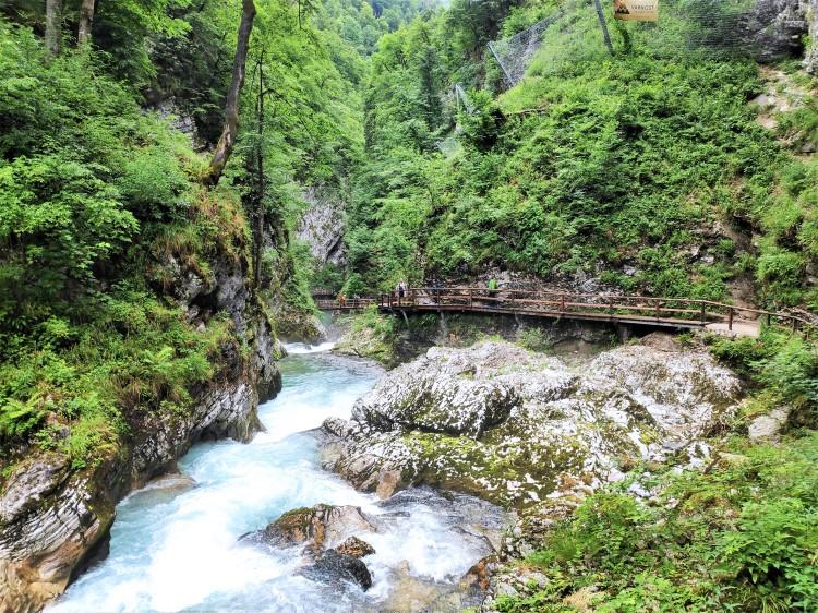 Les Gorges de Vintgar - Slovénie
