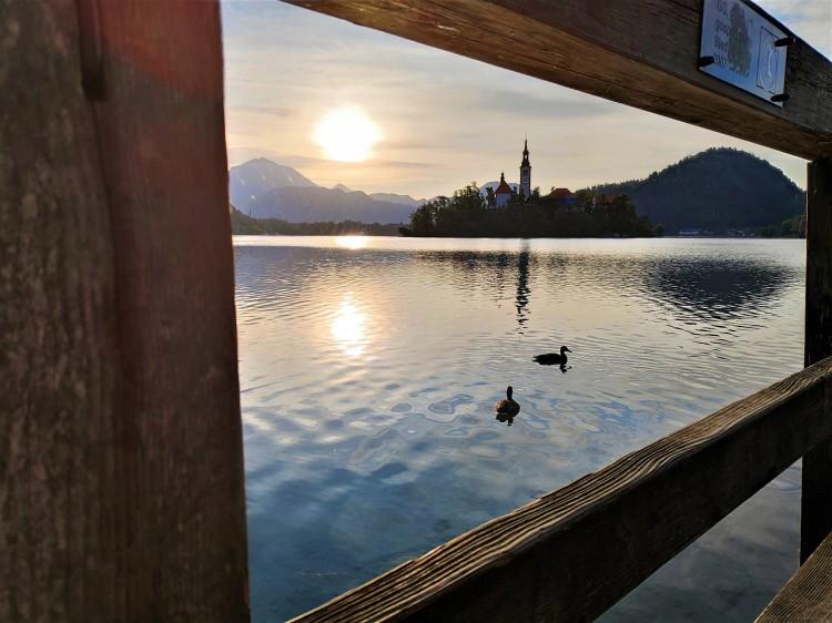 Promenade matinale au Lac de Bled