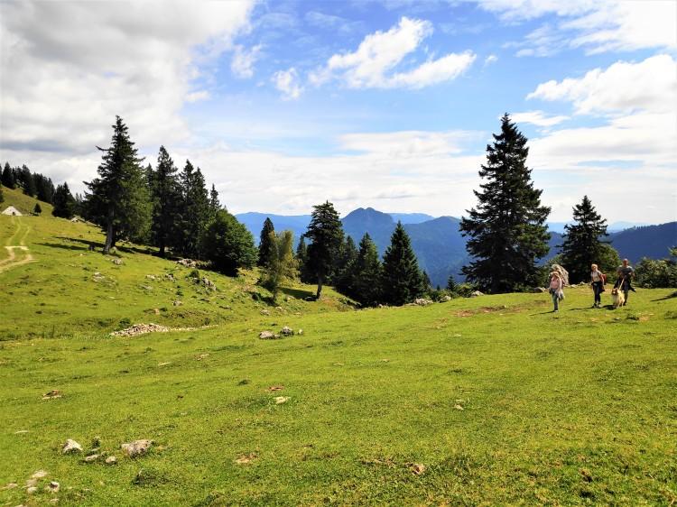 Alpages en Slovénie