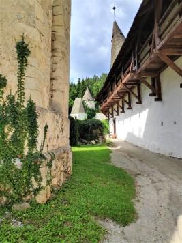 Chartreuse de Zice - Slovénie