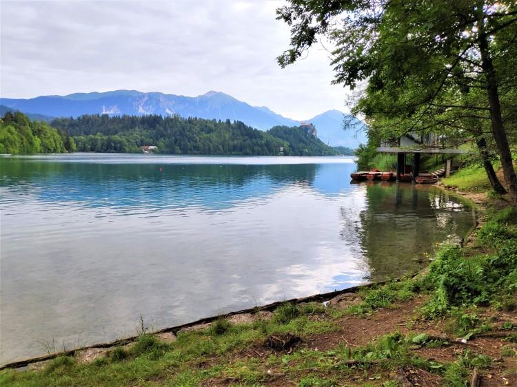 Marcher autour du lac de Bled en Slovénie