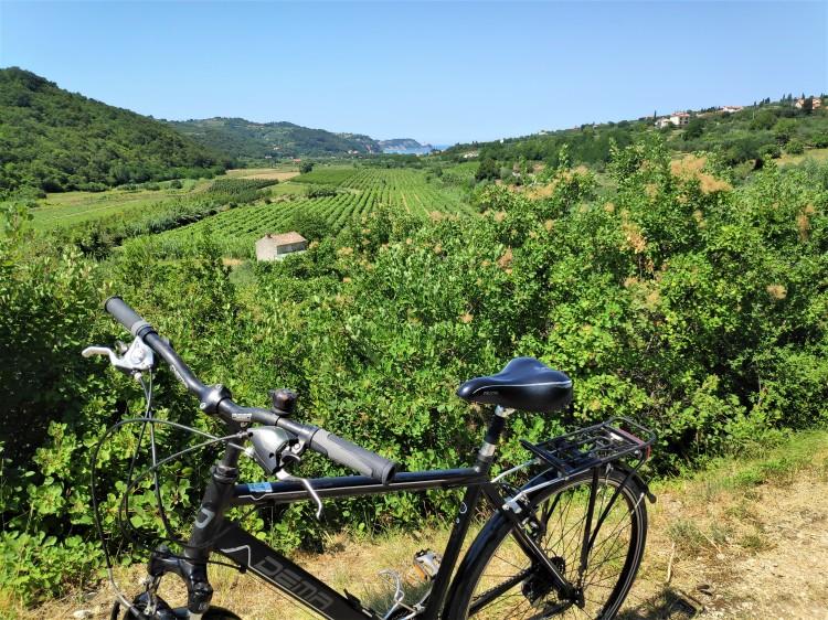 Parenzana, piste cyclable en Slovénie