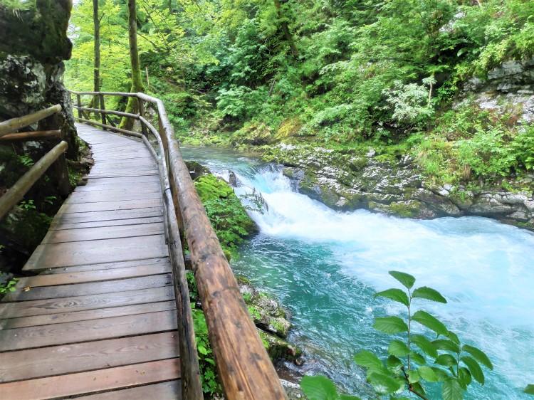 Gorge de Vintgar en Slovénie