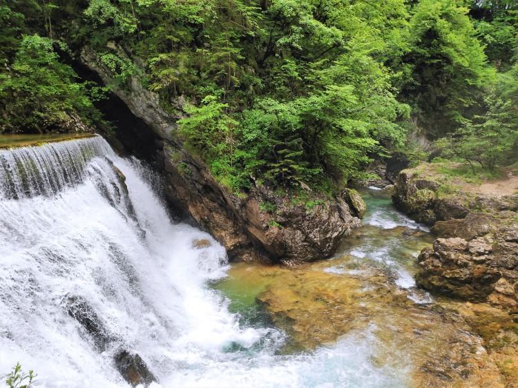 La Gorge de Vintgar, près du lac de Bled en Slovénie
