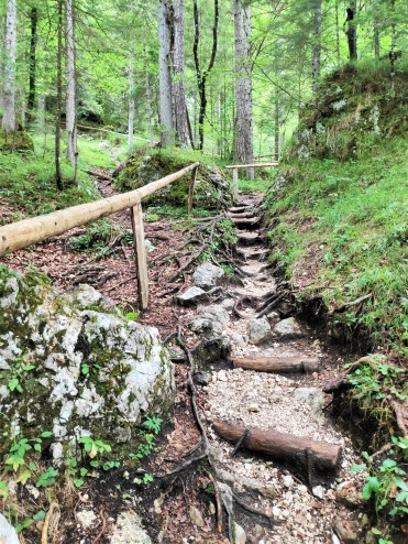 Sentier menant à la cascade Pericnik