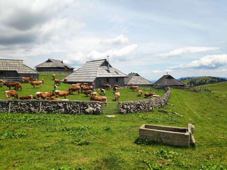 Velika Planina - Slovénie