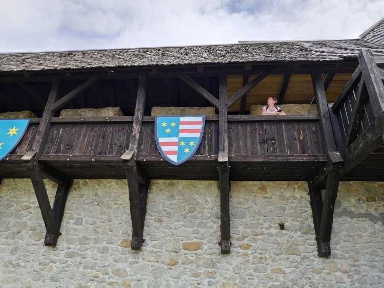 Château en Slovénie : Celje