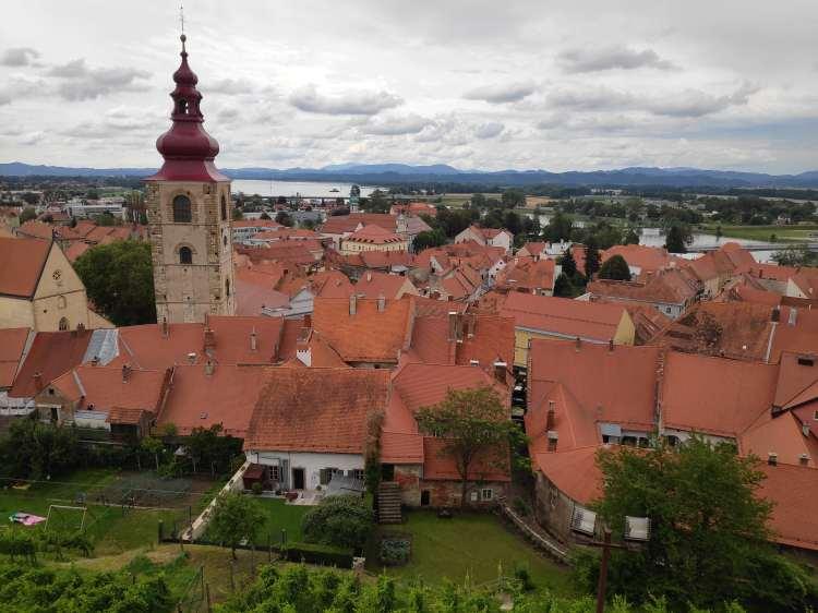 Vue sur Ptuj et la Drava