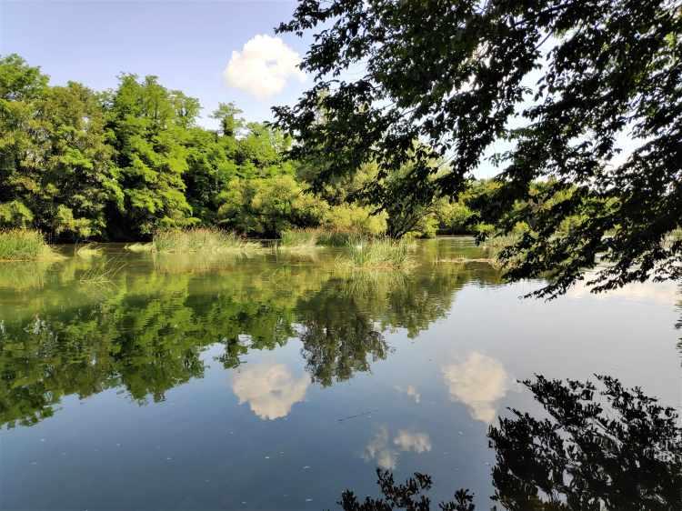La superbe rivière Krka près de Otocec, Slovénie