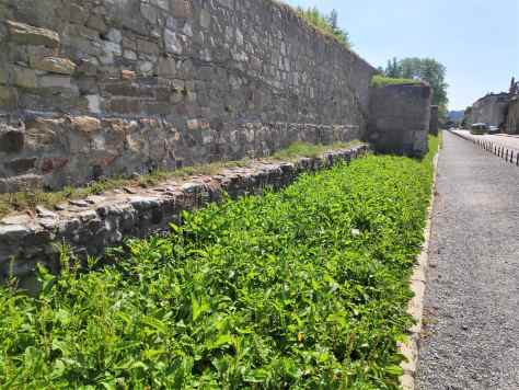 Mur d'enceinte de l'ancienne ville Emona, Ljubljana