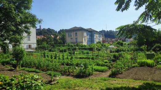 Jardins dans quartier Krakovo, Ljubljana