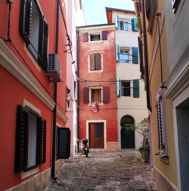 Les maisons couleurs pastel de Piran