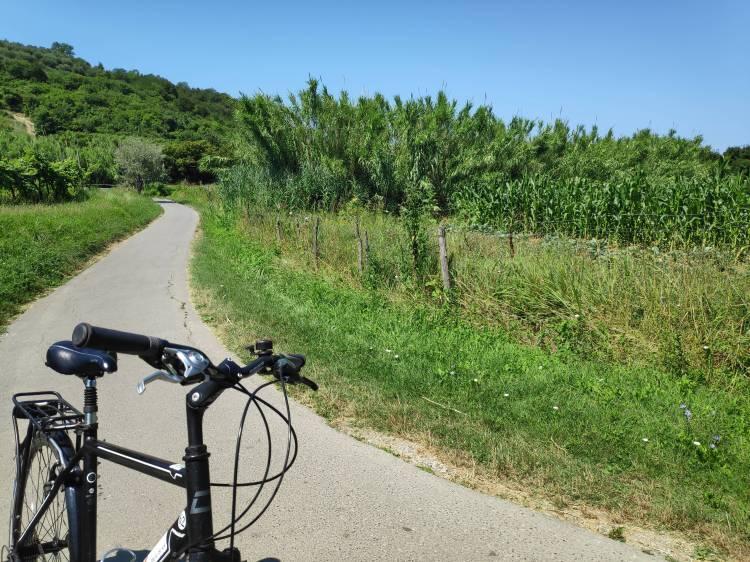 À bicyclette sur la D8 - Parenzana en Slovénie