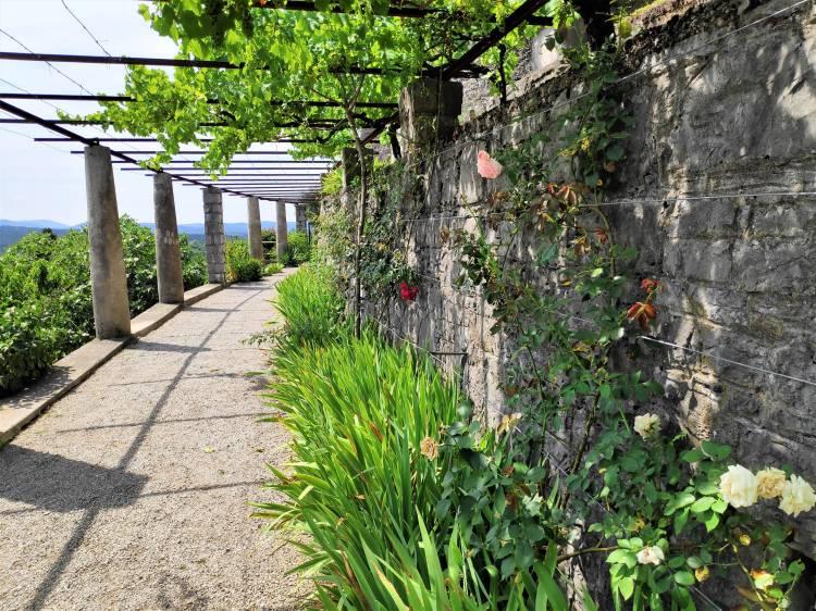 Magnifique allée couverte au Jardin Ferrari à Stanjel