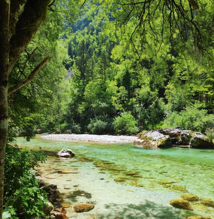 Vallée de la Soca. Slovénie