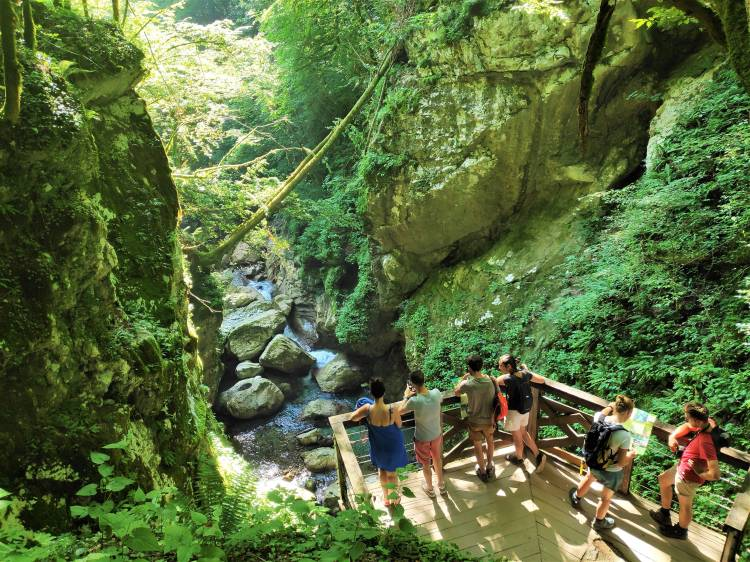Slovénie. Gorges de Tolmin