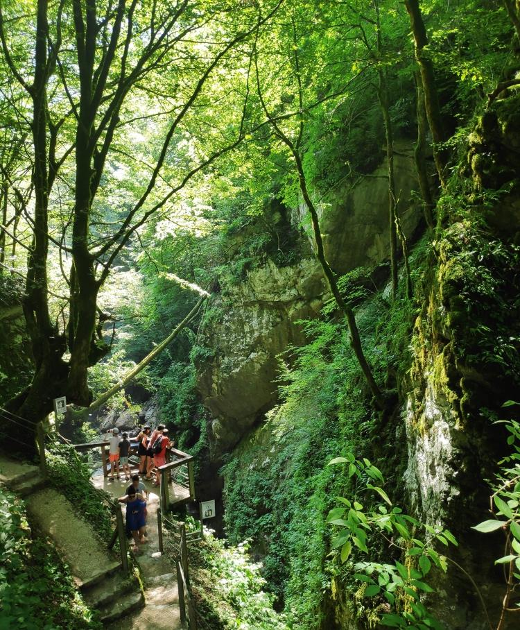 Gorges de Tolmin. Vallée de la Soca. Slovénie