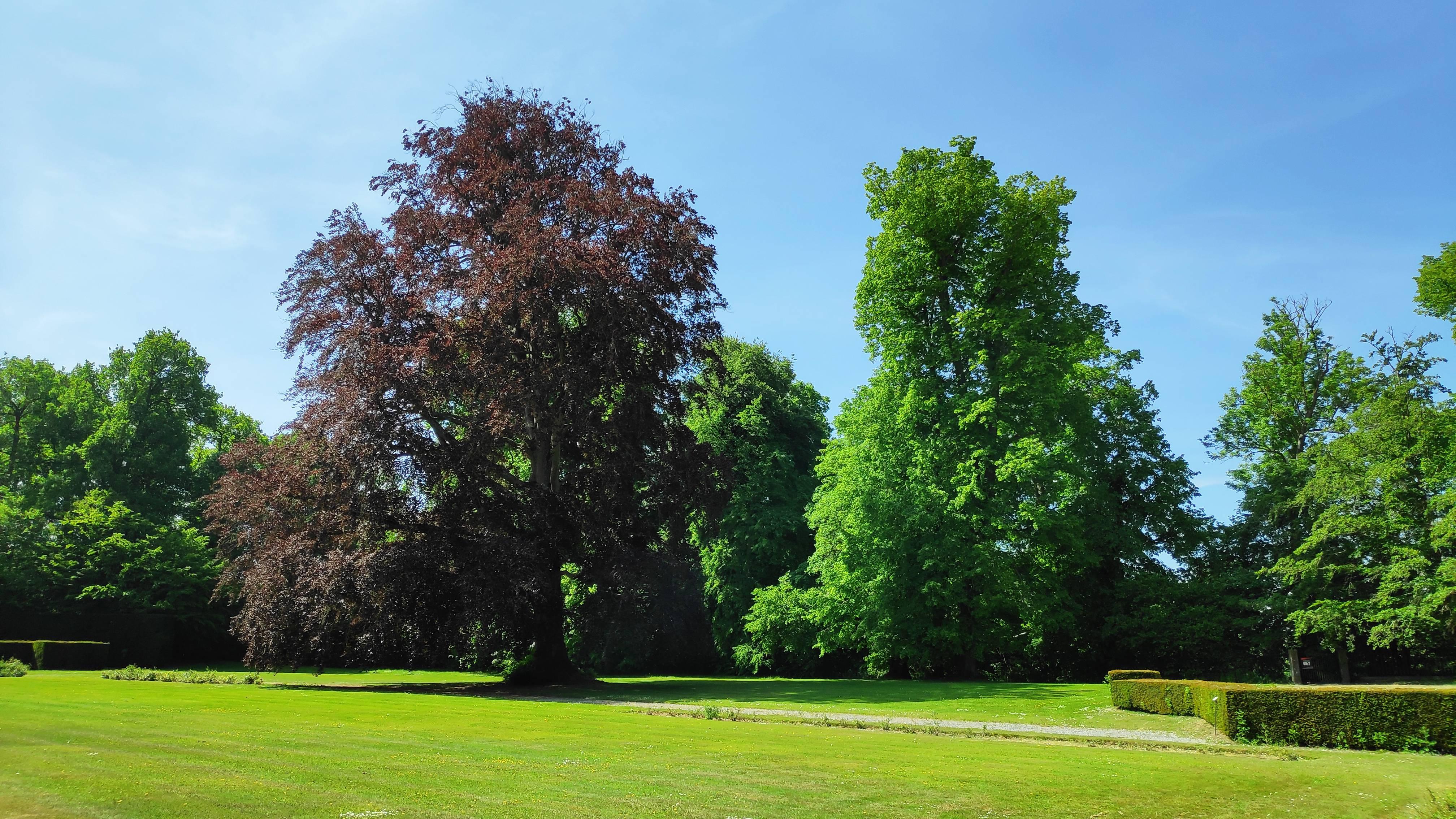 Parc du Château de Modave